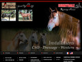 Pension chevaux CSO & Reining